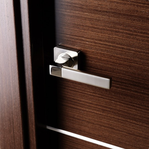 Arazzinni Mia Interior Door in a Wenge Finish with Silver Strips 2