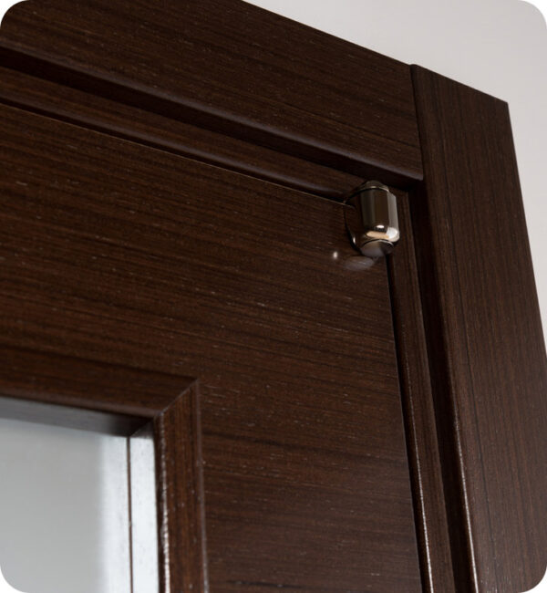 Arazzinni Mia Vetro Interior Door in a Wenge Finish with Silver Strips and Frosted Glass 7