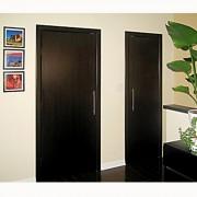 Aries-1V Wenge Interior Door2