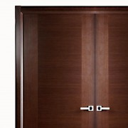 Aries–Modern-Interior-Double-Door-1
