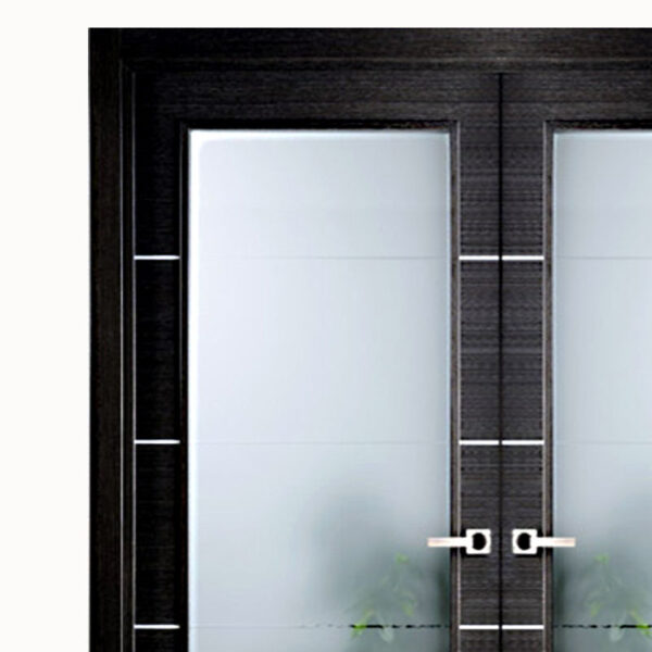 Aries modern interior double door black with glass panels Modern glass doors interior
