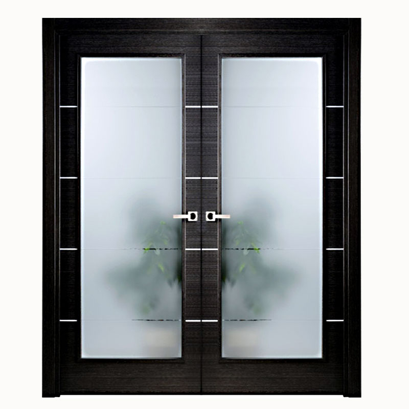 Aries modern interior double door black with glass panels Modern frosted glass interior doors