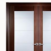 Aries–Modern-Interior-Double-Door-with-Glass-Panels-1
