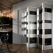 Aries-bi—fold-black-and-white-closet-door-008